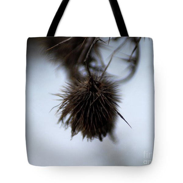 Autumn 2 Tote Bag by Wilhelm Hufnagl