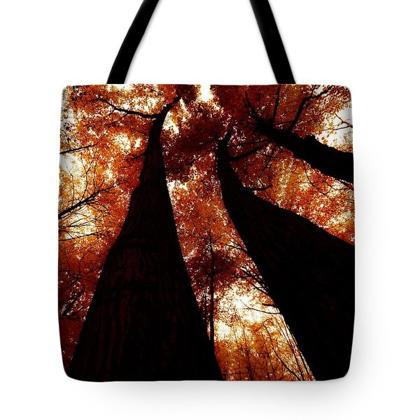 Autumn Canopy Abstract Tote Bag