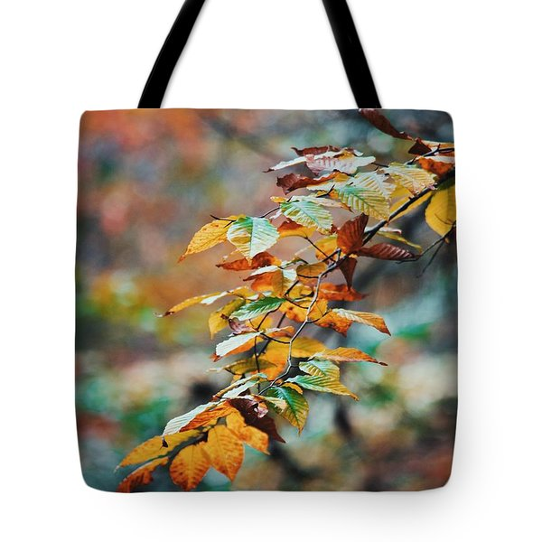 Tote Bag featuring the photograph Autumn Aesthetics by Parker Cunningham