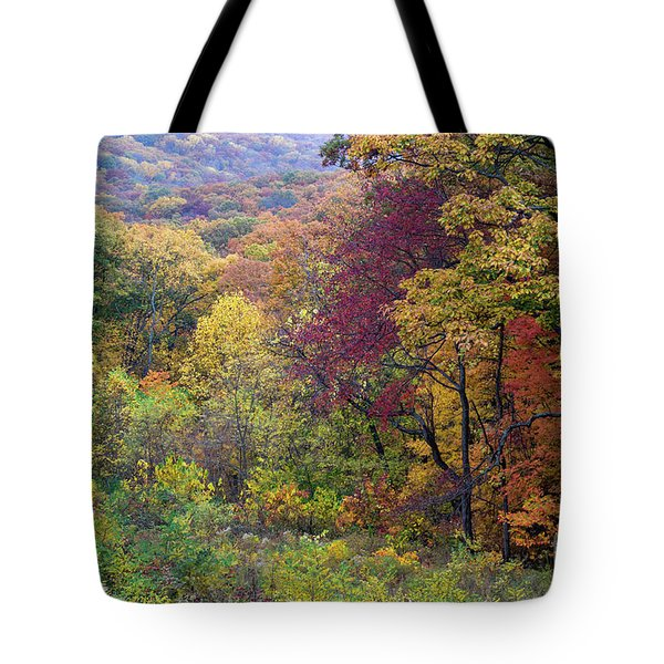 Tote Bag featuring the photograph Autumn Arrives In Brown County - D010020 by Daniel Dempster