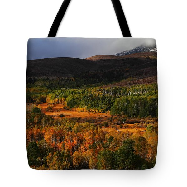 Autumn Aspen At Conway Summit In The Eastern Sierras Tote Bag