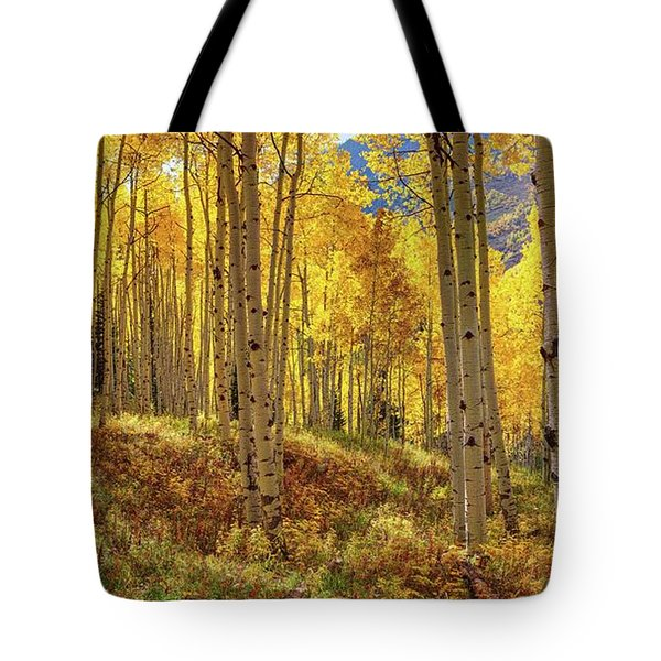 Autumn Aspen Forest Aspen Colorado Panorama Tote Bag