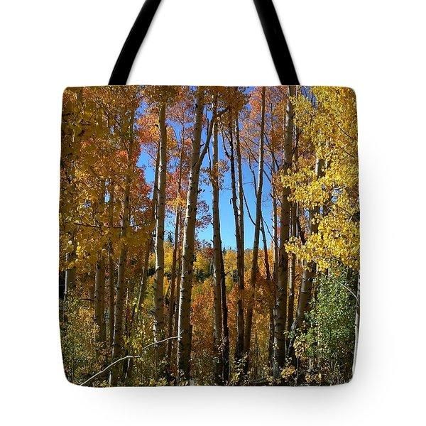 Tote Bag featuring the photograph Autumn Aspen Grove Dixie National Forest Utah by Deborah Moen