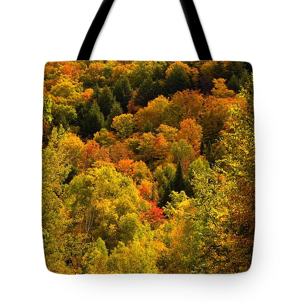 Autumn At Acadia Tote Bag
