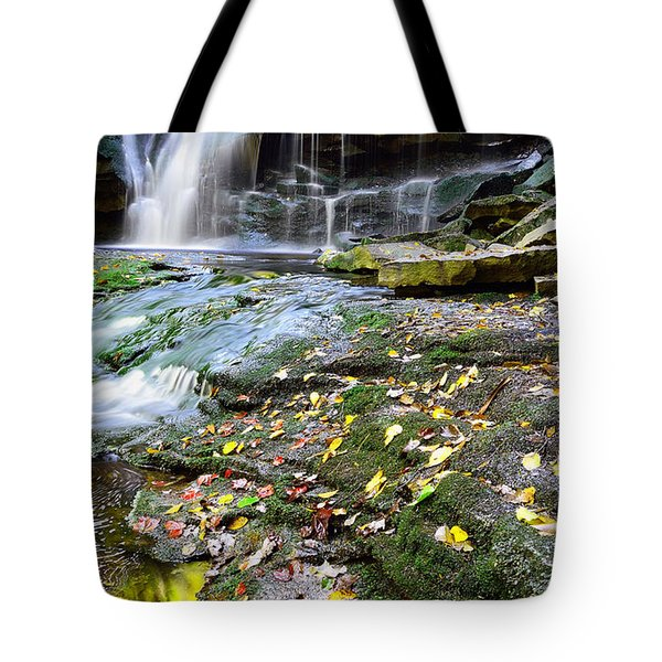 Autumn At Elakala Tote Bag
