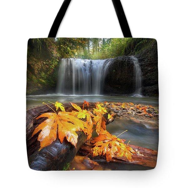 Autumn At Hidden Falls Tote Bag by David Gn