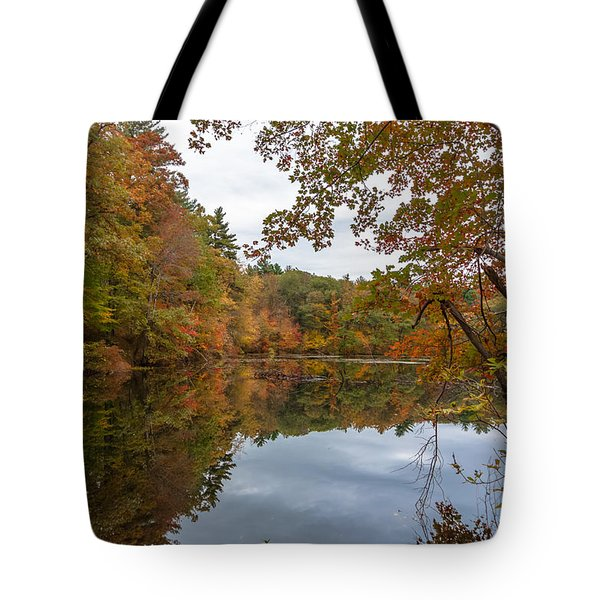 Autumn At Hillside Pond Tote Bag