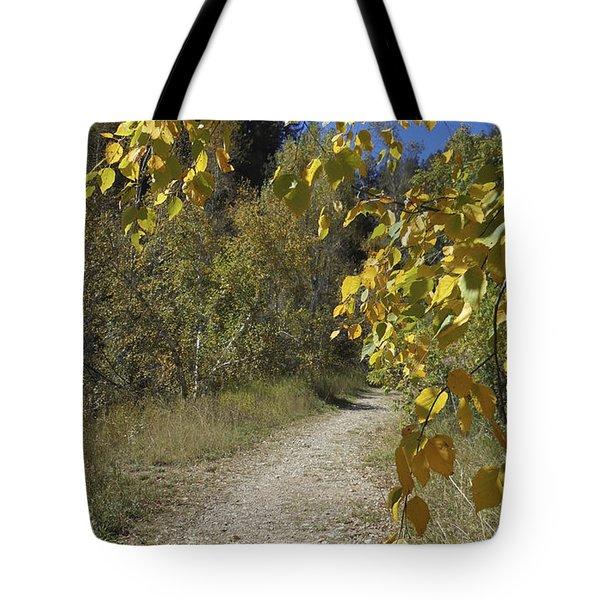Autumn At Iron Creek Tote Bag