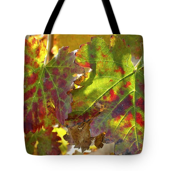 Tote Bag featuring the photograph Autumn At Lachish Vineyards 2 by Dubi Roman