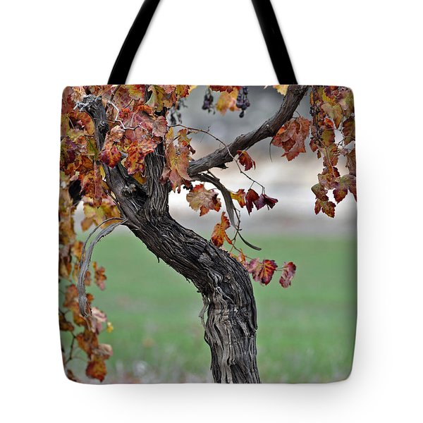 Tote Bag featuring the photograph Autumn At Lachish Vineyards 3 by Dubi Roman