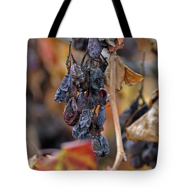 Tote Bag featuring the photograph Autumn At Lachish Vineyards 4 by Dubi Roman