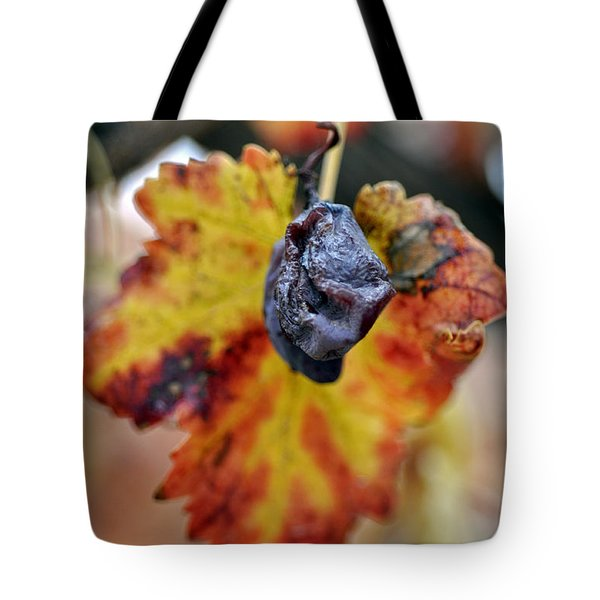 Tote Bag featuring the photograph Autumn At Lachish Vineyards 5 by Dubi Roman