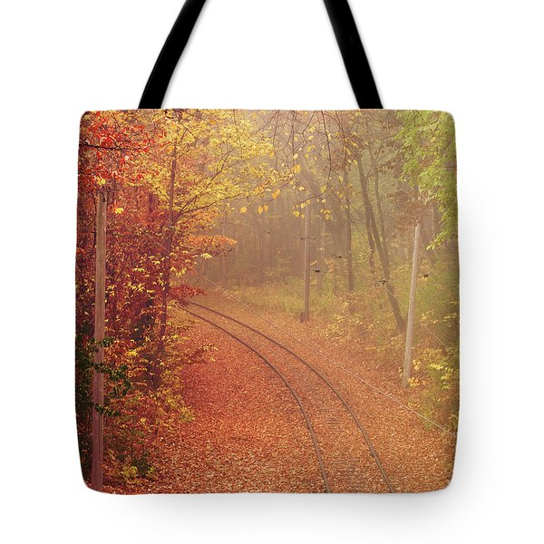 Autumn At Lake Harriet  Tote Bag