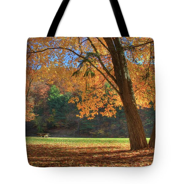 Tote Bag featuring the photograph Autumn At Lykens Glen by Lori Deiter