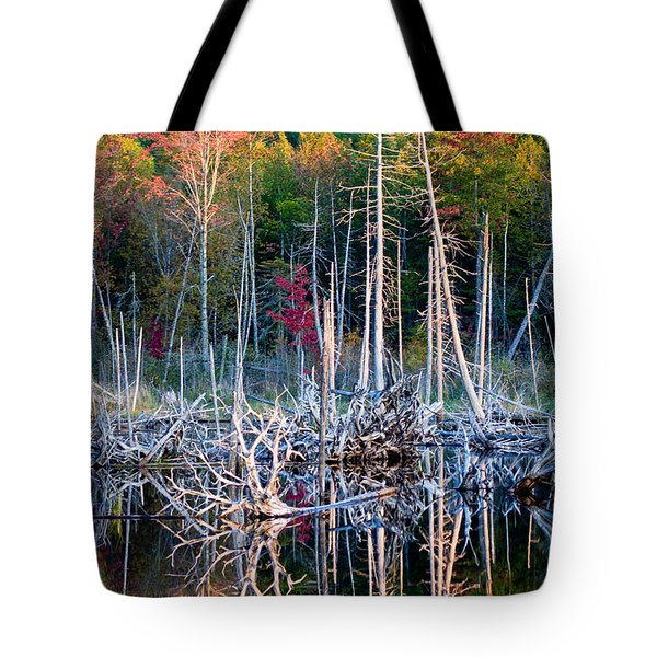 Autumn At Moosehead Bog Tote Bag
