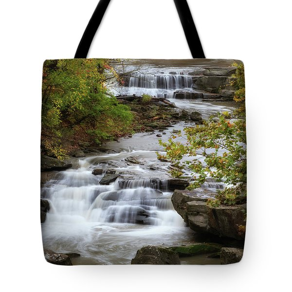 Tote Bag featuring the photograph Autumn At The Falls by Dale Kincaid