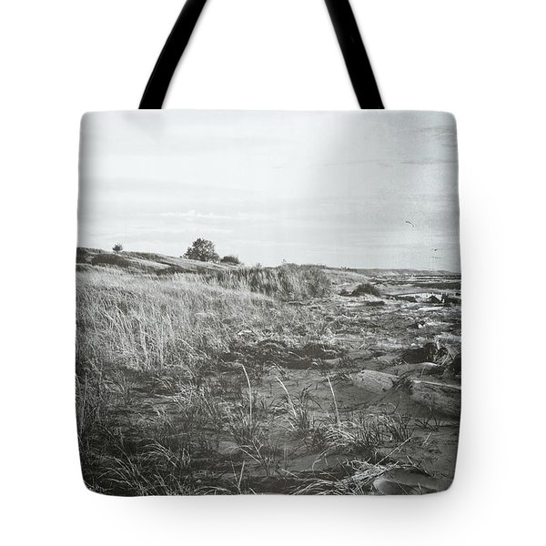 Tote Bag featuring the photograph Autumn At The Mouth Of The Big Sable 2.0 by Michelle Calkins