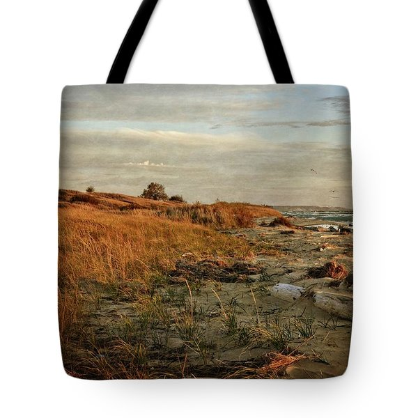 Tote Bag featuring the photograph Autumn At The Mouth Of The Big Sable by Michelle Calkins