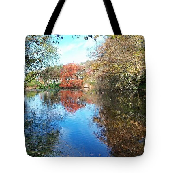 Autumn At The Park Tote Bag