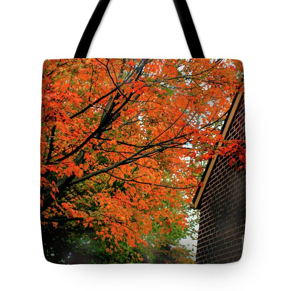 Autumn At The Window Tote Bag