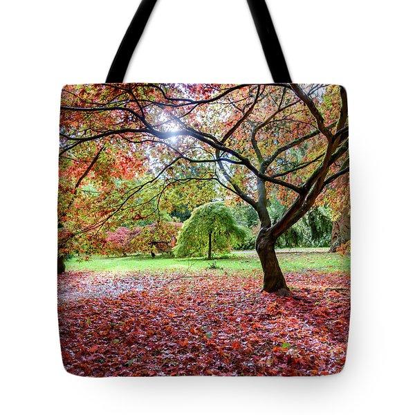 Autumn At Westonbirt Arboretum Tote Bag