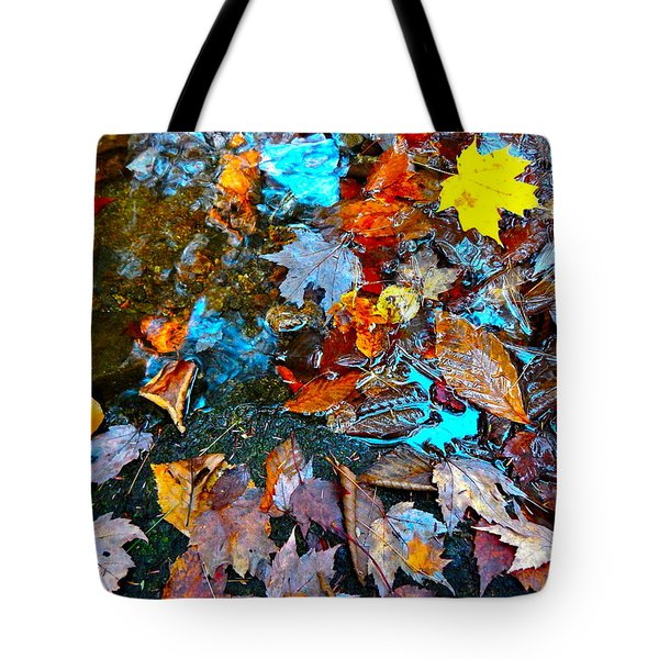Autumn B 2015 124 Tote Bag