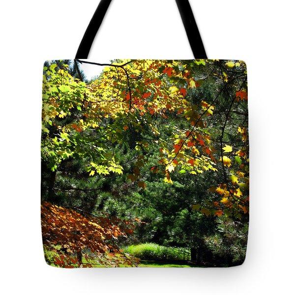 Tote Bag featuring the photograph Autumn Backyard by Joan  Minchak