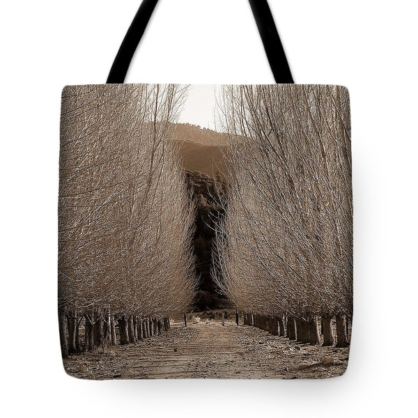 Autumn Bares Her Trees Tote Bag by Jeff Lowe