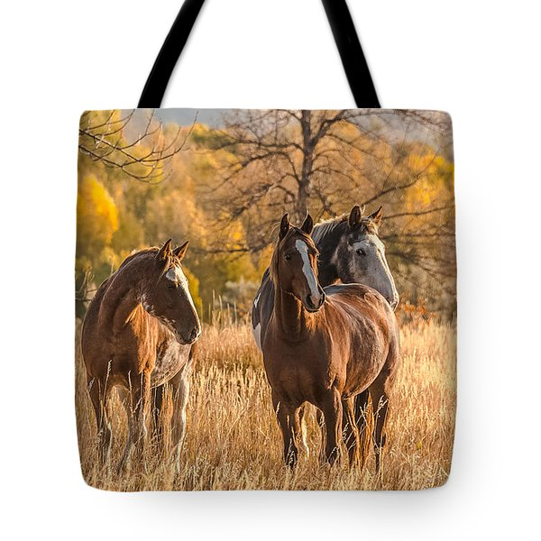 Tote Bag featuring the photograph Autumn Beauty At Dawn by Yeates Photography