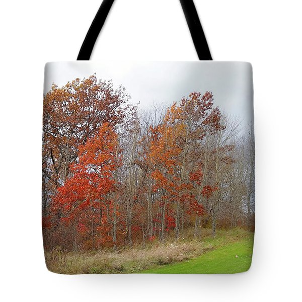 Tote Bag featuring the photograph Autumn Beauty by Jim Vance