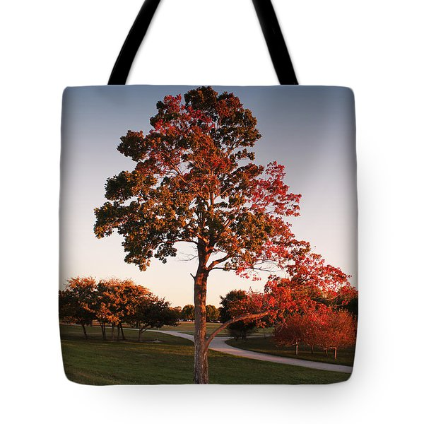 Autumn Beauty Tote Bag by Milena Ilieva