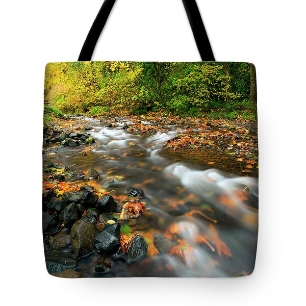 Autumn Beneath Tote Bag by Mike  Dawson