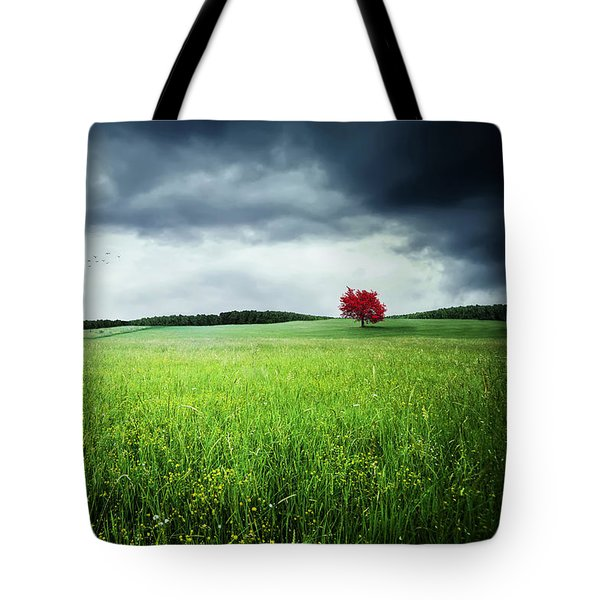Tote Bag featuring the photograph Autumn by Bess Hamiti
