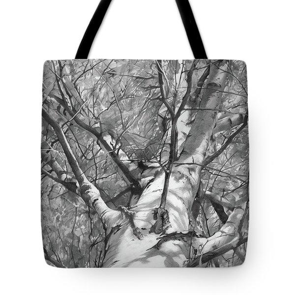 Autumn Birch Tote Bag