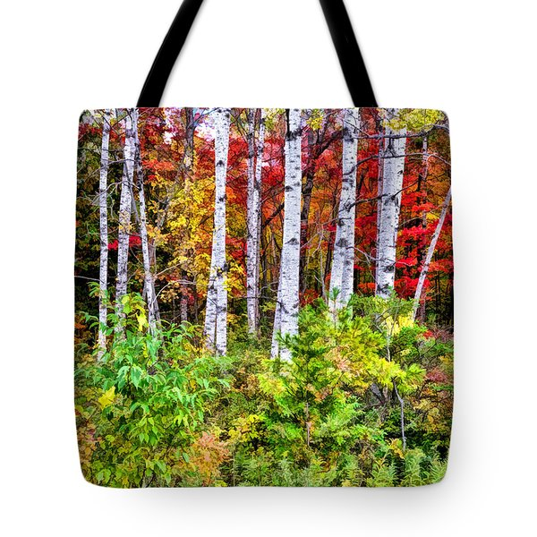 Tote Bag featuring the painting Autumn Birches by Christopher Arndt