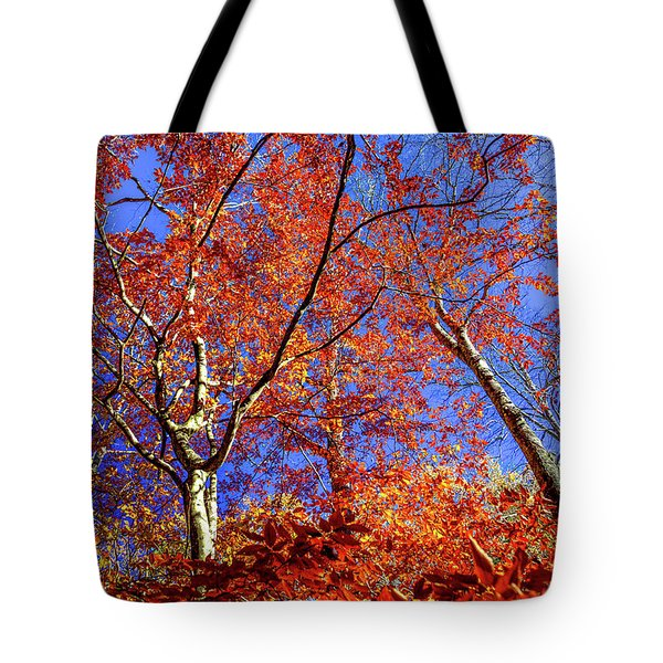 Tote Bag featuring the photograph Autumn Blaze by Karen Wiles
