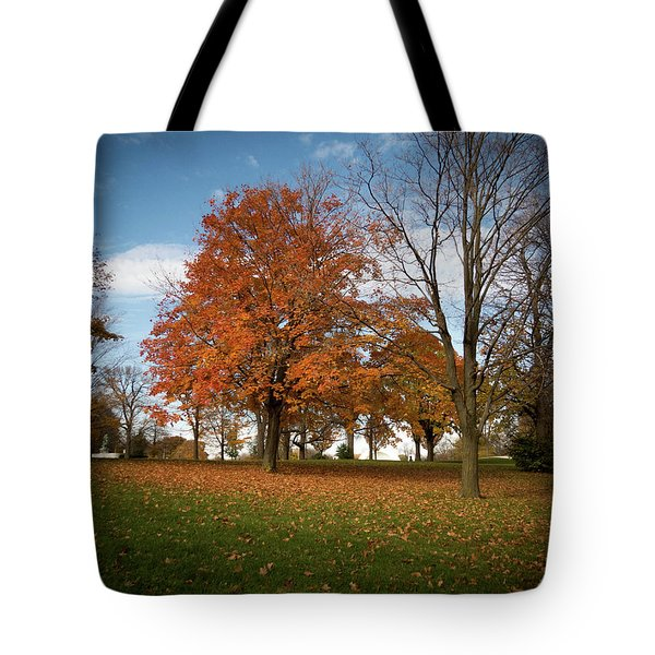 Tote Bag featuring the photograph Autumn Bliss by Kimberly Mackowski