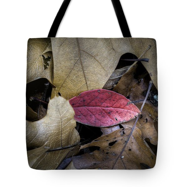 Autumn Blueberry  Tote Bag by Steve Gravano