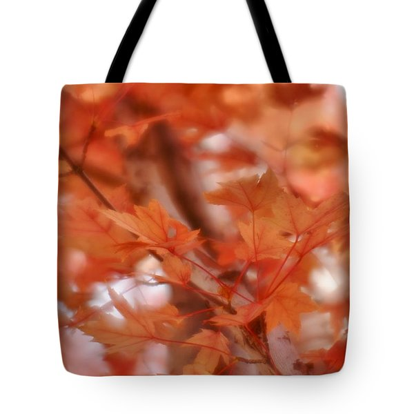 Tote Bag featuring the photograph Autumn Blush by Diane Alexander
