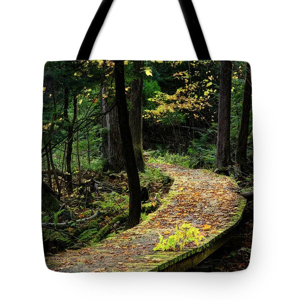 Autumn Boardwalk Tote Bag