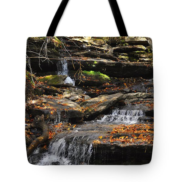 Autumn Brook Tote Bag by Diane E Berry