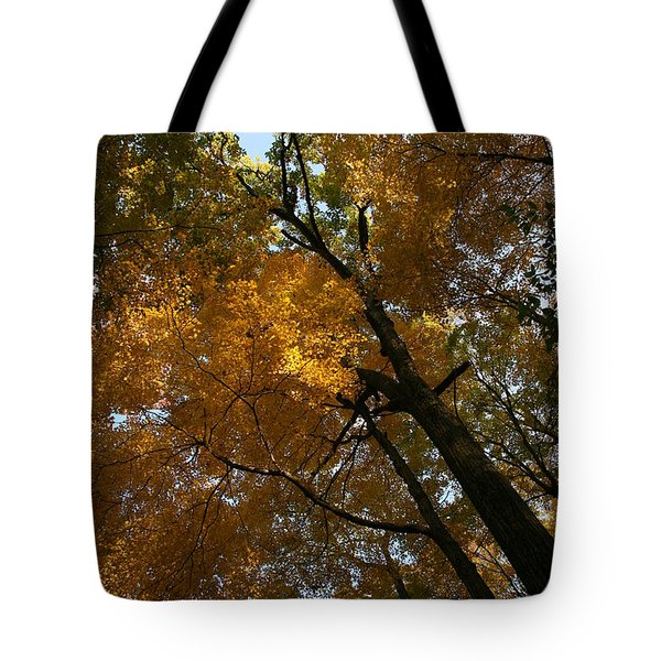 Tote Bag featuring the photograph Autumn Canopy by Shari Jardina