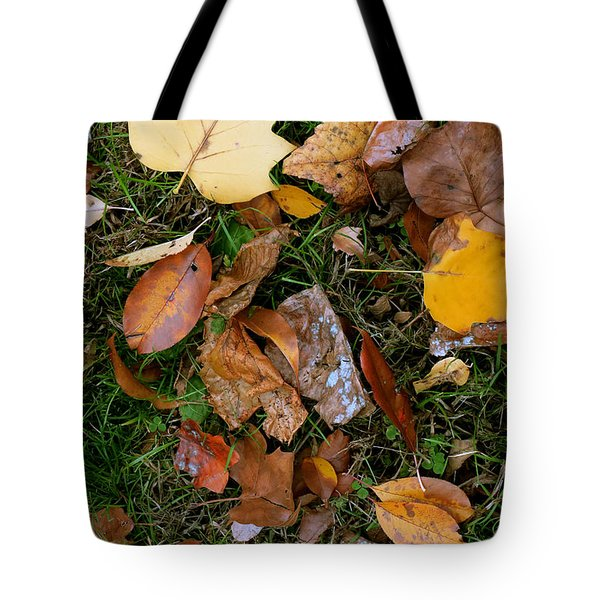 Tote Bag featuring the photograph Autumn Carpet 001 by Dorin Adrian Berbier