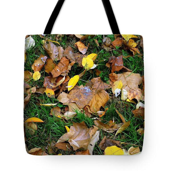 Tote Bag featuring the photograph Autumn Carpet 002 by Dorin Adrian Berbier