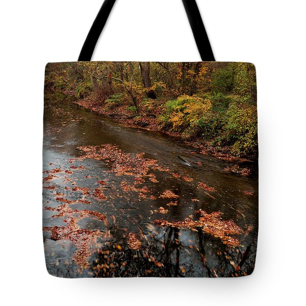 Tote Bag featuring the photograph Autumn Carpet 003 by Dorin Adrian Berbier