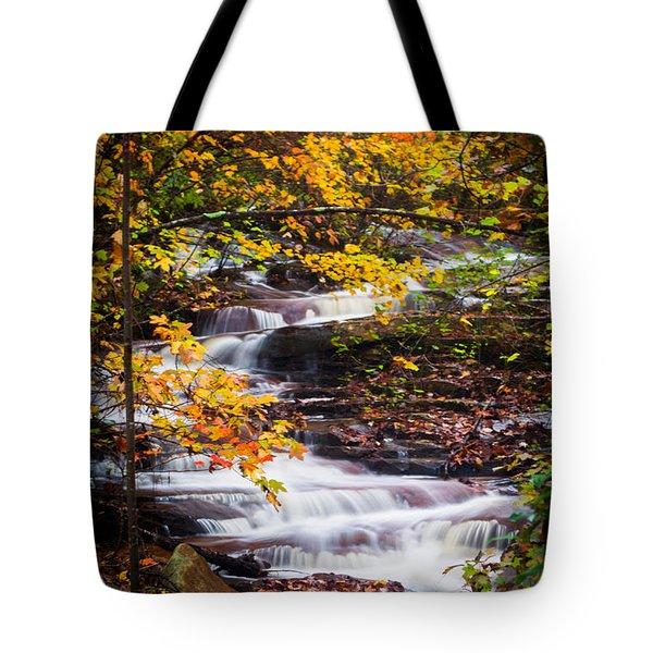 Autumn Cascade  Tote Bag
