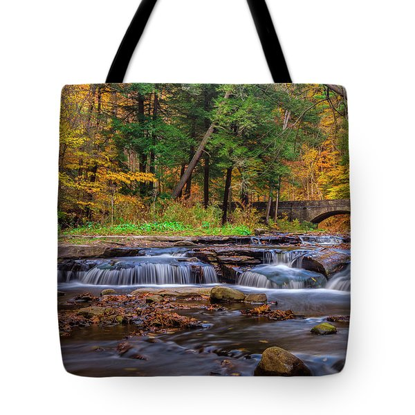 Autumn Cascades Tote Bag by Mark Papke