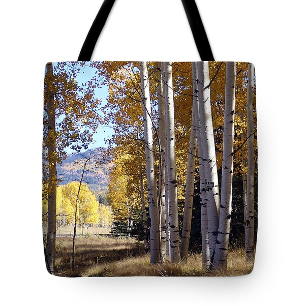 Autumn Chama New Mexico Tote Bag
