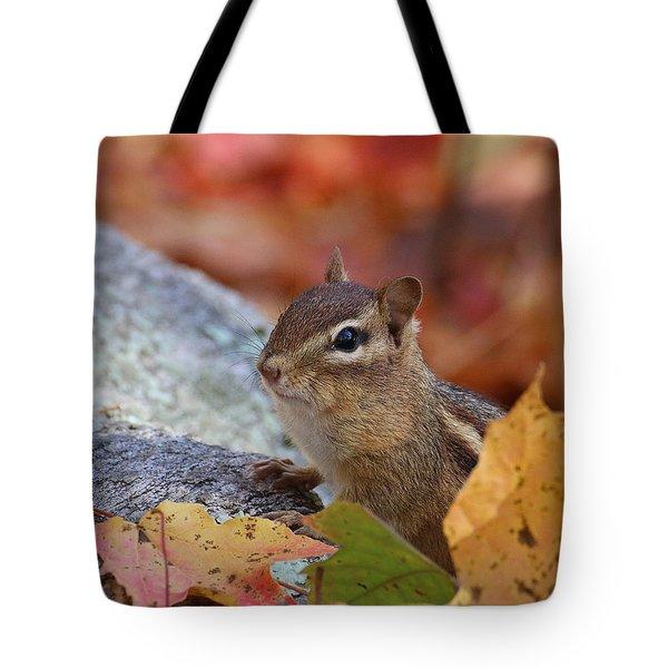 Autumn Chipmunk Tote Bag