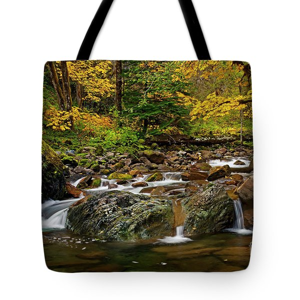 Autumn Clear Tote Bag